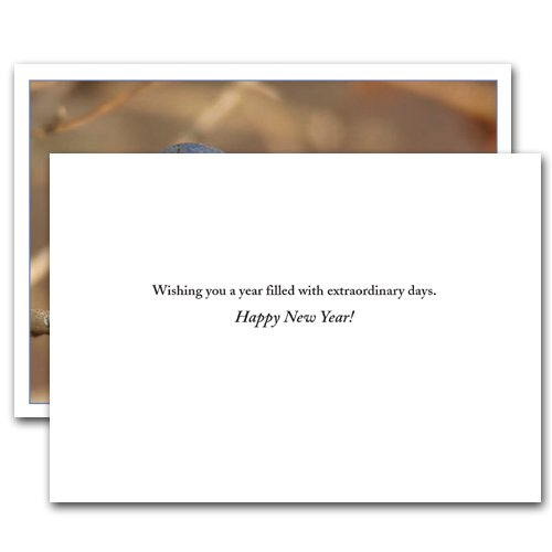 Bluebird: New Year Holiday Cards - box of 10 cards and envelopes Photo #2