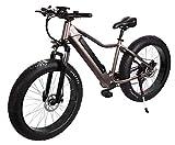 "E-Fatbike ""Fat Tire Subcross"", E-Bike, Elektrofahrrad, Fahrrad, E-Fahrrad, 40 km/h, 500 Watt,..."