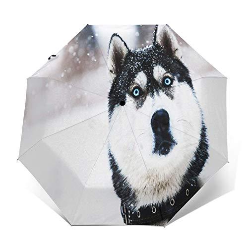Regenschirm Taschenschirm Kompakter Falt-Regenschirm, Winddichter, Auf-Zu-Automatik, Verstärktes Dach, Ergonomischer...