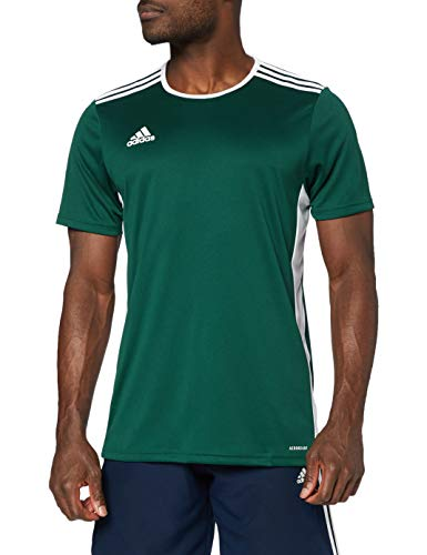 adidas Entrada 18 JSY T-Shirt, Hombre, Collegiate Green/White, S