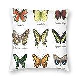 Fundas de cojín con estampado 3D, Insectos de primavera de estilo acuarela Urania Helius Saturnia Pavonia Diseño animal, Fundas de cojín cuadradas decorativas Funda para sofá Sofá Decoración del hogar