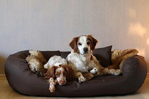 tierlando® Hundebett Orthopädisch Große Hunde - Ares Visco Oval - Hundesofa Hundekissen Dog Bed Waschbar XL Braun