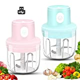 Best Nut Choppers - Wireless Mini Food Chopper, 2 Pack Electric Small Review