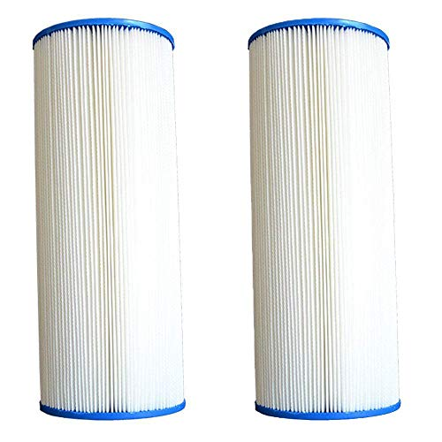 Pleatco PA225 Pool Filter Replacement Cartridge, MicroStar-Clear C225 (2 Pack)