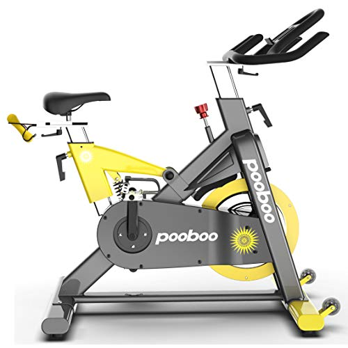 L NOW D501 Magnetic Indoor Cycling Bike