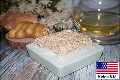 Luffa Soap White Tea & Ginger Exfoliating Soap Made With Natural Loofah Sponge Made in USA