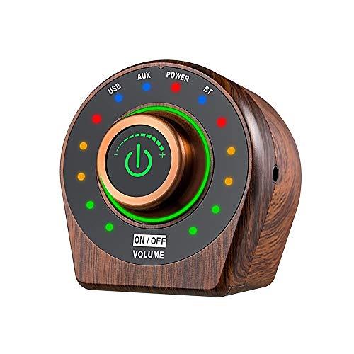 DIMENXONG Conjuntos y componentes electrónicos DIY TPA3116 Clase D HiFi Bluetooth 5.0 2x50W Digital Power Audio Amplificador Mini Stereo AMP Amplificador Home Theatre USB Player Aux