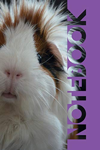 Notebook: Cavy Handy Composition Book for Researching Cavies Guinea Pig Cages