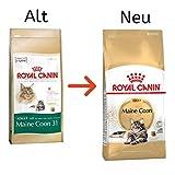 Royal Canin Maine Coon 31 Katzenfutter, 10 kg