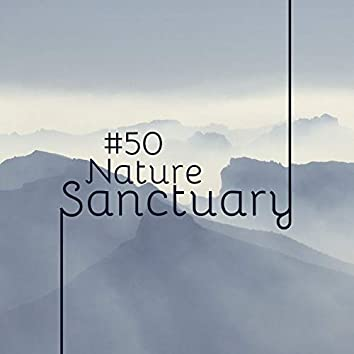 #50 Nature Sanctuary - Lift Your Mood, Mental Peace Zen Serenity Asian Spa Music for Relaxation