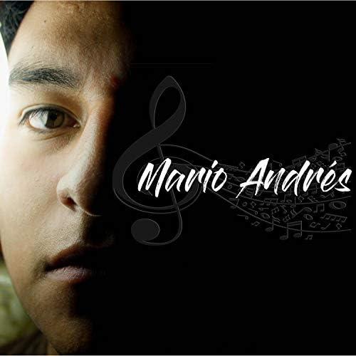 Mario Andrés