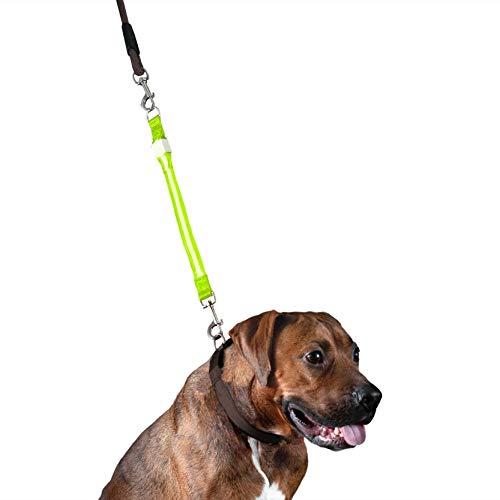 Furhaven Hundeleine – 30 cm hohe Sichtbarkeit, helle LED-Leuchte, Sicherheitsleine für Hunde und Katzen, grün, Einheitsgröße