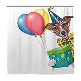 GLONLY Duschvorhang,Geburtstag Bunte Luftballons Box Print,Badvorhang Badezimmer Hochwertig mit Haken Set Wasser Resistent 180 x 180 cm