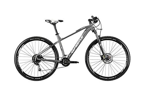 whistle patwin 2161 mtb hardtail mountain bike 29'' modello 2021