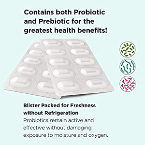 Omax 3 Boxes Probiotic + Prebiotic Supplement Pills, 50 Billion CFU, 10 Clinically Studied Strains, Dairy-Free, Vegan, Non-GMO, Blister Packed (90 Vege-Capsules)
