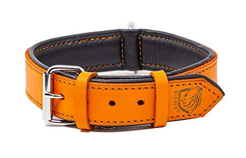 Riparo Collar de perro acolchado de cuero genuino Collar de mascota ajustable K-9 fuerte (S: 1,9cm de ancho para cuello de 28cm - 34,3cm, Naranja)