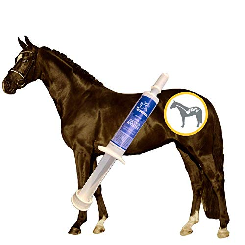 ♥EMMA Gastro Booster para caballos, alimento para caballos + levadura de cerveza, prebiótico I flora intestinal intacta, para energía Más vitaminas B, C, E, biotina, calcio, ácido fólico, zinc 1 pc