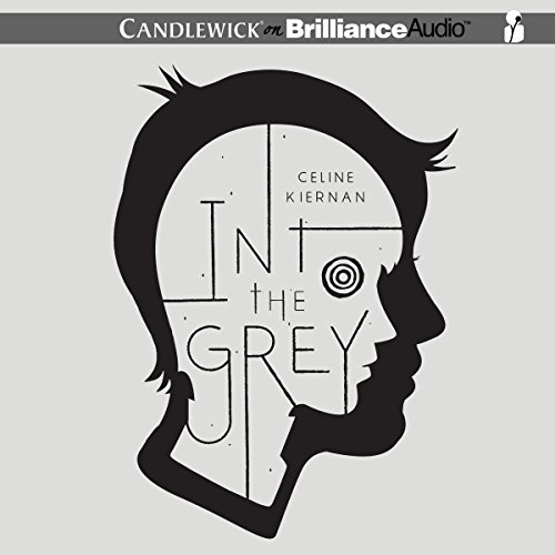 Into the Grey audiobook cover art