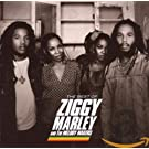 Best of Ziggy Marley & Melody Makers