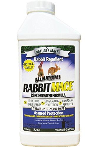 Nature's Mace Rabbit Mace 40oz Concentrate