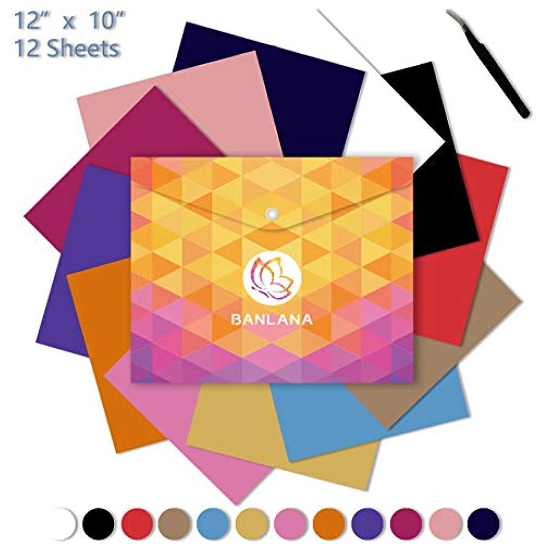 Heat Transfer Vinyl Bundle Kit by Banlana, 12