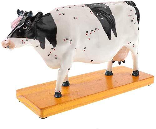 LBYLYH Cattle Akupunktur Modell Anatomie Tier Kuh Vorbeugende Meridian Diagramm Vieh Bildungseinrichtungen Oder Veterinär-Studenten