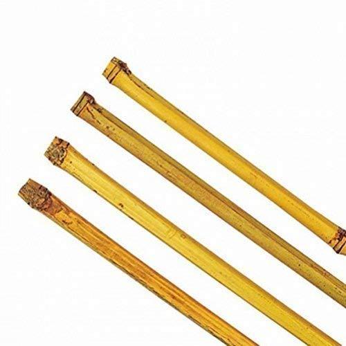 10 Stück Bambusstäbe Tonkinstäbe Pflanzstäbe Ø 18-21 mm x 180 cm