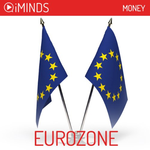 Euro Zone audiobook cover art
