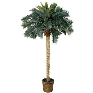 Silk Flower Arrangements Nearly Natural 6ft. Sago Palm Silk Artificial Tree, 6 ft, Green