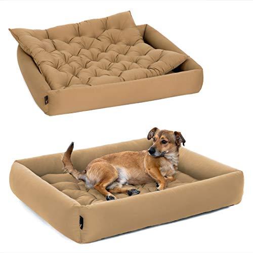 Pointer | Hundebett mit Hundekissen - orthopädisch, waschbar, bequem (XXXL - 110x100 cm, Beige)
