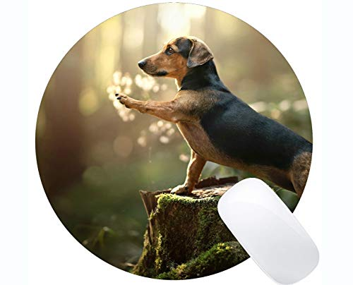 Runde Mausunterlage aus Naturkautschuk, bedruckt mit Hundedackel - Genähte Kanten
