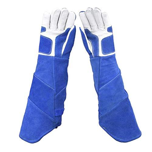 PETSOLA Anti-Biss Schutzhandschuhe Lange Handschuhe für Hunde, Katzen, Schlangen, Eidechse, usw. - XL