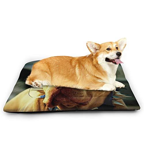 Niet toepasbaar Pitbull Honden Met Koele Bril Huisdier Kat En Hond Pad Waterdicht Huisdier Matrassen Absorberende Handdoek Tapijt, 31