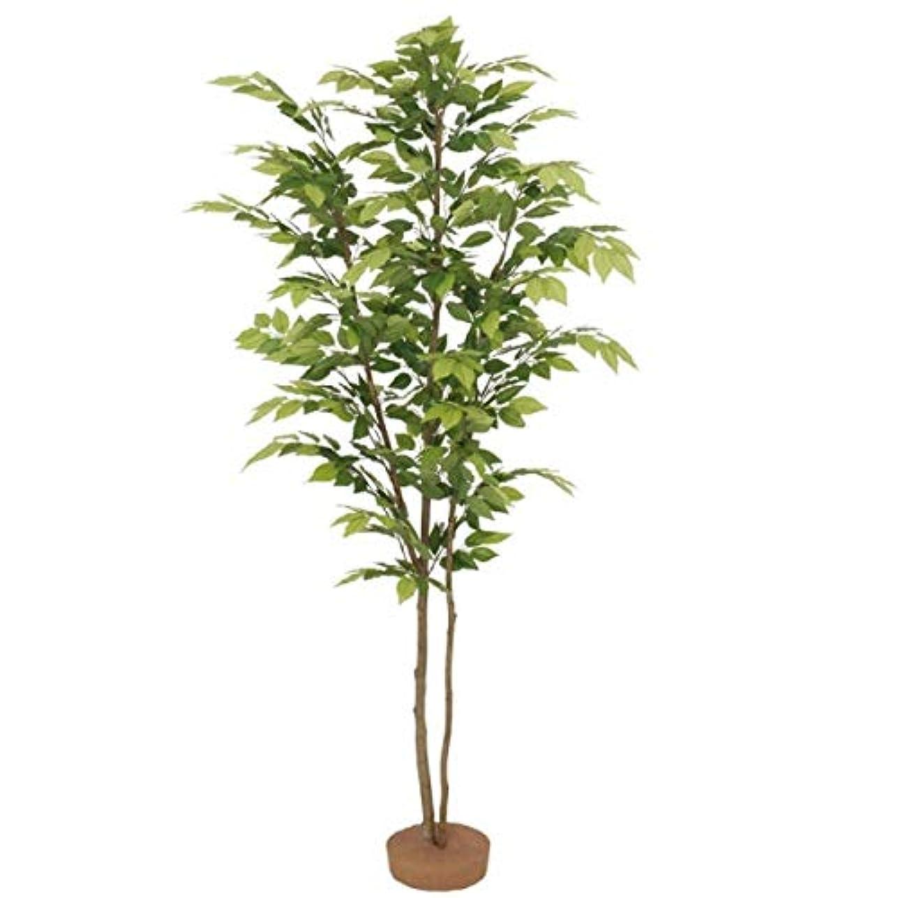 シェア耐える流星『人工植栽』 タカショー グリーンデコ和風 ケヤキ 鉢無 1.8m GD-69#21486000