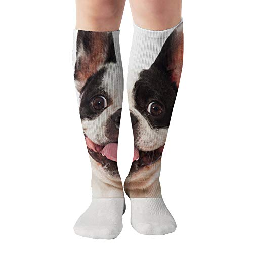 French Bulldog Looking Over Board Funny Compression Socks For Women&Men - Best Medical For Running Athletic Flight Travel Circulation Recovery,19.68 Inch