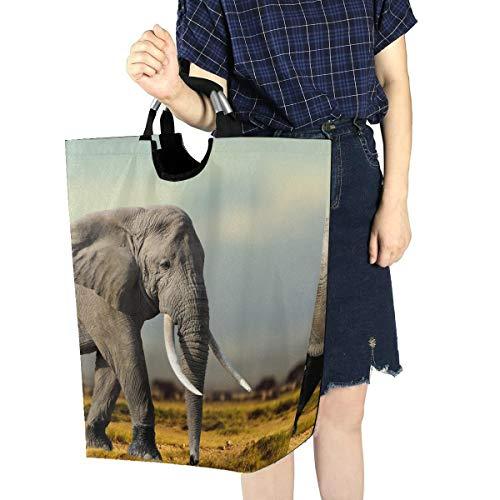 Rechteck Wäschekorb Afrikanischer Elefant Masai Mara National Park Wäschekorb für Jugendliche Hübsche Wäschekörbe 11 X 12,6 X 22,7 Zoll Faltbarer Oxford Stoff Schmutzige Kleidung Spielzeug Veranstal