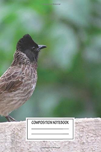 Composition Notebook: Animals Redvented Bulbul Was A Common Visitor To Our Window Birds Wide Ruled Note Book, Diary, Planner, Journal for Writing