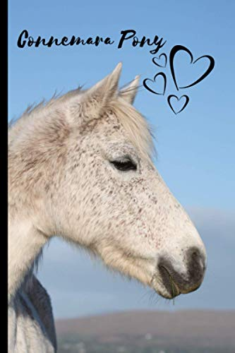 Connemara Pony Notebook: Composition Notebook 6x9' Blank Lined Journal