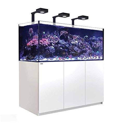 Reefer Red Sea Deluxe XXL - Riffkomplettaquarium - 625 Liter - Weiß