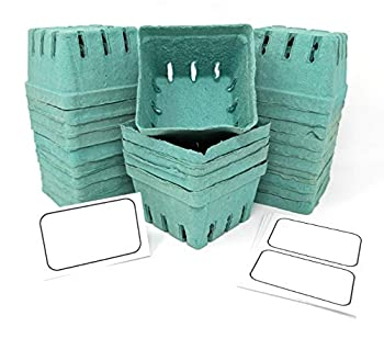 Zachronyms Farmers Market Baskets - Set of 15 | 1 Pint Berry/Produce Compostable and Biodegradable Pulp Baskets - with Tent Cards  8