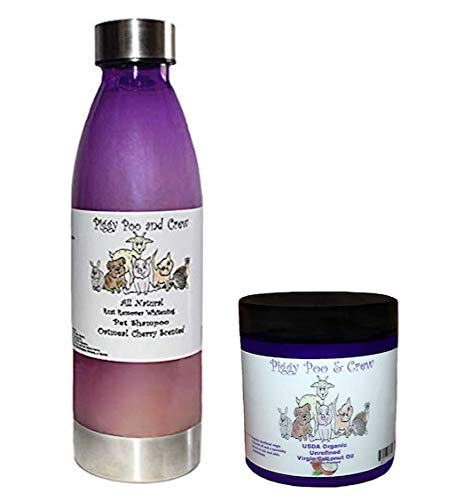 USDA Organic Unrefined Virgin Cherry Scented Coconut Oil For Your Pig With A Specialty Blend of Hair & Skin Moisturizers & All Natural Cherry Scented Whitening Pig Rust Shampoo 22 ounces - Combo Pack