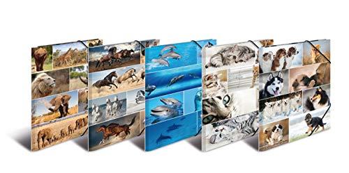 HERMA verzamelmap serie dieren van stevig karton met bedrukte binnenkleppen, elastiek map, hoekspanner-map Set van 10 DIN A3 Set van 10