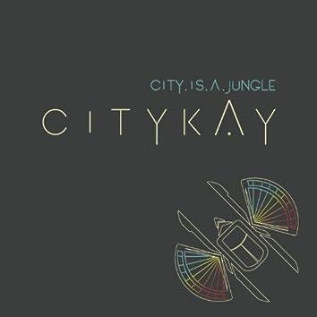 City Is a Jungle (Radio Edit)