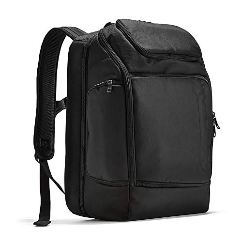eBags Professional Flight Laptop Backpack - Best Computer Bag for Travel - Fits up to 15.6 Inch Laptop - (Black)