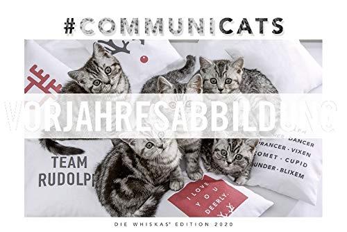 Vendre Whiskas Katzenkalender 2021   Jubileo!