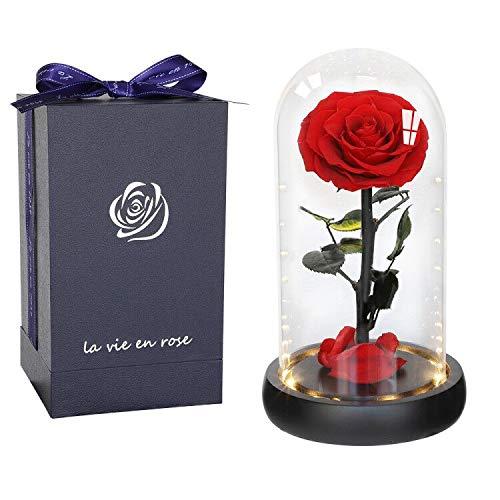 Anaoo Rosa Bella y Bestia Rosa Eterna Cupula Cristal Flores Preservadas Regalos Originales San Valentin para Mujeres, Cumpleaños, Boda, Aniversario Dia de la Madre con Caja Elegante y Tarjeta