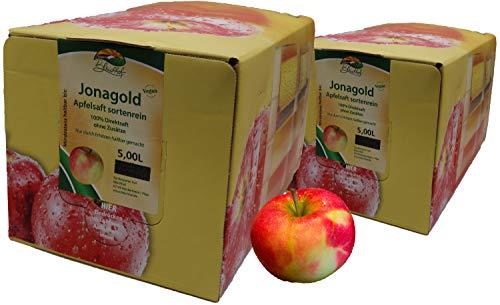 Bleichhof Apfelsaft Jonagold - 100% Direktsaft, OHNE Zuckerzusatz, Bag-in-Box mit Zapfsystem (2x 5l Saftbox)