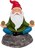 GreenLighting Light Up Zen Bitcoin Garden Gnome - Novelty Solar Powered Garden Statue