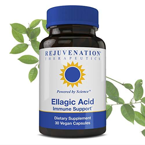 Rejuvenation Therapeutics Ellagic Acid Capsules | Improve Immunity & Eliminate Oxidative Stress | Premium Organic & Vegan Friendly | 30 Capsules 250 Mg
