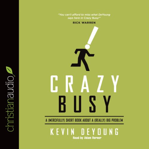 Crazy Busy cover art